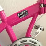 fword_pink_bicycle